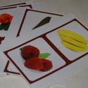 Les fruits (Grandes images classifiées)